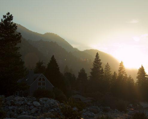 Bli med ELSA på hyttetur. Illustrasjonsfoto av skog.