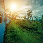 Bli med ELSA Bergen til Sri Lanka! Illustrasjonsfoto.